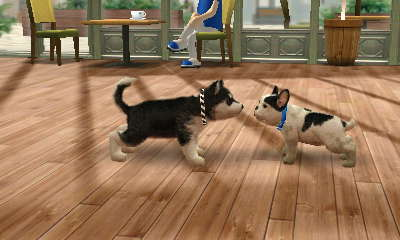Nintendogs and Cats: Getting on